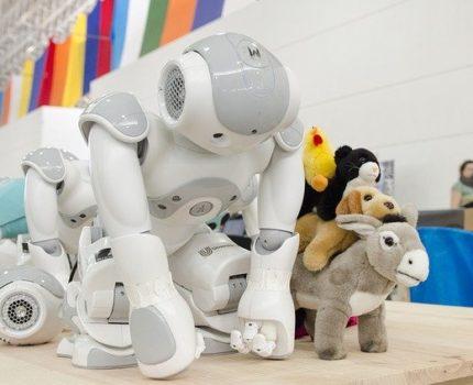 Zajęcia robotyki dla dzieci, dlaczego warto?